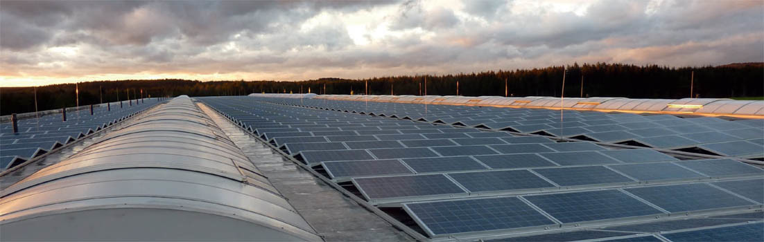 Winaico Solar Array